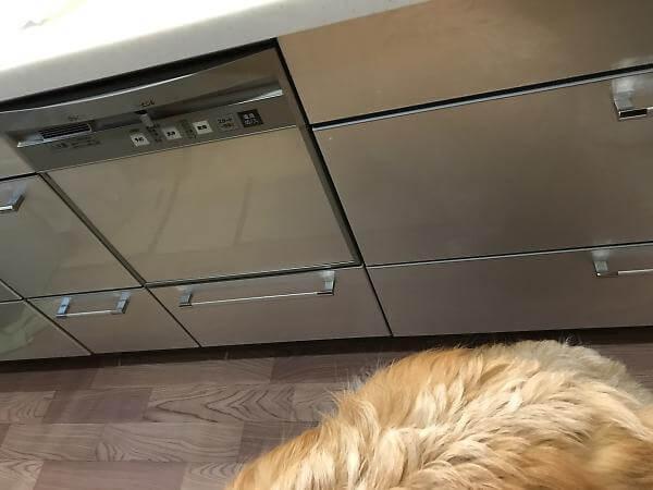 システムキッチンにビルトインされた食洗器